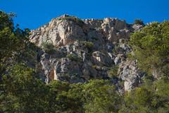 Rock formation and pine trees on the Costa Brava Royalty Free Stock Photos