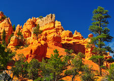 Rock formation in red canyon park in Utah. Royalty Free Stock Images