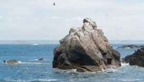 Rock formation at Seven Islands Stock Photography