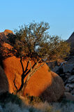 Rock formation at Spitzkoppe Stock Photo
