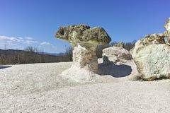Rock formation The Stone Mushrooms, Bulgaria stock photos