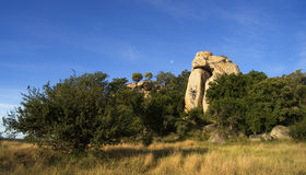 Rock formation in trees Royalty Free Stock Images