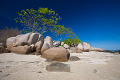 Rock formation on tropical sandy beach Stock Photography