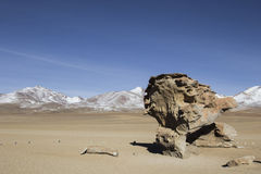 Rock formation in Uyuni, Bolivia known as Arbol de Piedra.  Royalty Free Stock Image