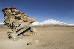 Rock formation in Uyuni, Bolivia known as Arbol de Piedra.  Royalty Free Stock Photos