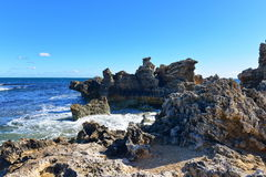 Rock formations along the coast of Penguin Island Royalty Free Stock Images