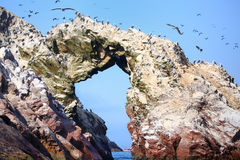 Rock formations in Ballestas Islands Reserve in Peru. Ballestas islands are an important sanctuary for marine fauna Royalty Free Stock Photo