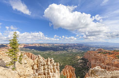 Rock formations in Bryce Canyon National Park, USA. Royalty Free Stock Photography