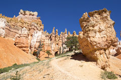 Rock formations in Bryce Canyon National Park, Utah Royalty Free Stock Photos