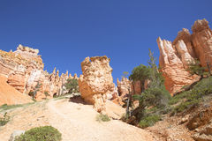 Rock formations in Bryce Canyon National Park, Utah Stock Photo