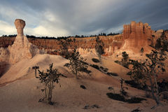 Rock formations in Bryce National Park Royalty Free Stock Photo