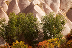 Rock formations of Cappadocia Royalty Free Stock Image