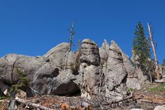 Rock Formations in Custer State Park. Large quartz rock formations eroded by time are next to cut pine trees that have beetle damage in Custer State Park, South royalty free stock photo