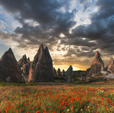 Rock formations and flowers of Cappadocia Stock Photos