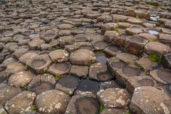 Rock formations at Giant`s Causeway, County Antrim, Northern Ireland Royalty Free Stock Images