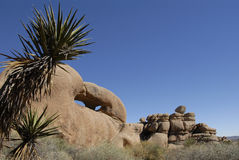 Rock formations at Joshua Tree National Park, Cali Royalty Free Stock Images