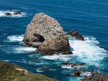 Rock formations in the ocean. At New Zealand coastline Royalty Free Stock Image
