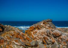Rock formations on part of the Otetr Trail on the Indian Ocean Stock Photography