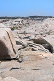 Rock formations at Peggy's Cove Royalty Free Stock Image