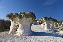 Rock formations resembling mushrooms Royalty Free Stock Image