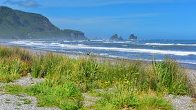 Rock formations and scenic landscape at Motukiekie Beach in New Zealand Stock Photo