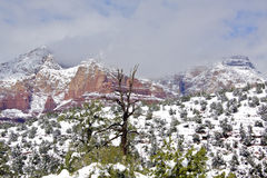 Rock Formations Sedona in Snow Stock Images