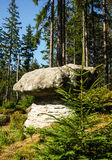 Rock Formations at Table Mountains National Park in Poland Stock Photos