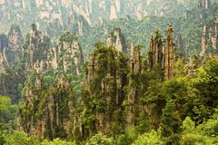 Tianzi Mountains, Zhangjiajie National Forest Park, Hunan Provin Stock Photography