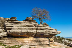 Rock formations of Torcal de Antequera. Rock formations and limestone karst with a bare tree in winter, against a clear blue sky at El Torcal de Antequera Stock Photo