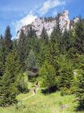 Rock formations in Vratna Valley, Slovakia stock photography