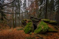 Rock full of moss in the colorful autumn forest near Zkamenely zamek stock images