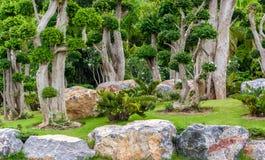 Rock garden royalty free stock image