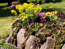 Rock garden Royalty Free Stock Images