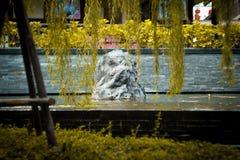 Rock garden. In a golden tree Royalty Free Stock Photos