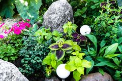 Rock garden with his own hands - rockeries royalty free stock photography