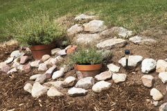 Rock Garden Stock Images