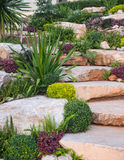 Rock garden. With small trees planted between them give a sense of beauty Royalty Free Stock Photography