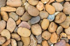 Rock garden Stock Image