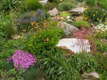 Rock garden in the spring Stock Images