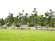 Rock garden and trained trees. Stock Images