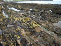 Rock, Geological Phenomenon, Coast, Geology stock photo