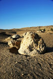 Rock in gobi desert Stock Image