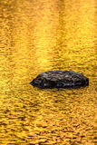 Rock and gold autumn lake reflections Royalty Free Stock Photos
