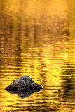 Rock and gold autumn lake reflections Stock Images
