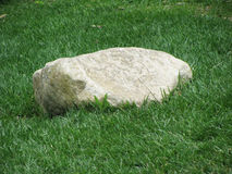 A rock in the grass Royalty Free Stock Images