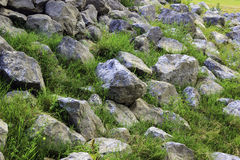 Rock with green grass Stock Photography