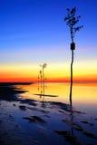Rock Harbor Sunset, Cape Cod Royalty Free Stock Photos