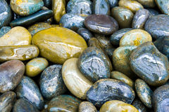 Colorful Wet Rocks Royalty Free Stock Photo