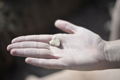 Rock heart Royalty Free Stock Images