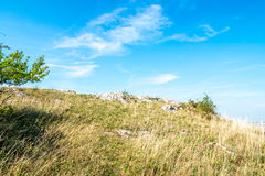 Rock on hill Kobila in Bratislava Stock Photography